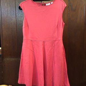 New York & Company Cotton Dress, Size L